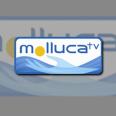 Molluca TV